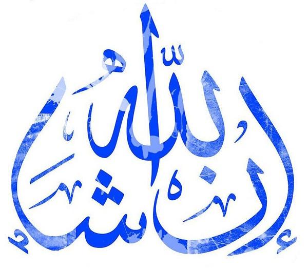 Insha 39 Allah Ordinary Wonder